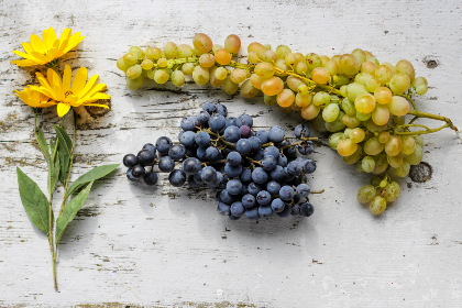 rustic,  table,  flowers,  yellow,  fresh,  garden,  fruit,  grapes,  food,  garening,  woodgrain,  texture,  flat lay,  leaf,  leaves,  spring,  summer,  nutrition,  healthy,  bloom,  blossom,  bouquet,  wooden,  beautiful,  floral,  flora,  nature,  organic