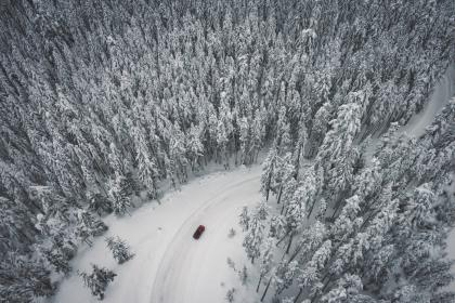 snow, winter, white, cold, weather, ice, trees, plants, nature, travel, adventure, road, car, vehicle, transportation, woods, forest