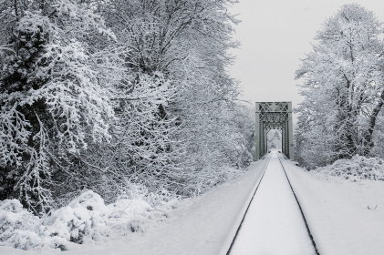 snow,  train,  tracks,  transport,  outdoors,  trees,  fresh,  winter,  cold,  freezing,  climate,  environment,  frost,  travel
