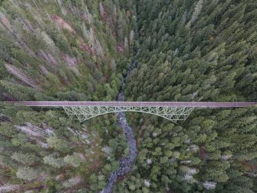 nature, landscape, aerial, travel, adventure, bridge, infrastructure, trees, leaves, woods, forest, water, river, lake