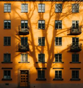 architecture, building, infrastructure, design, facade, sunny, tree, shadow