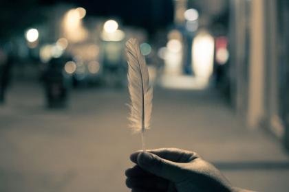 feather, hands, night, lights, blurry, city