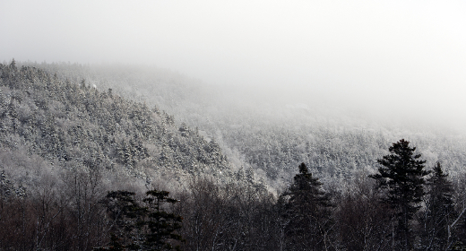 winter,   landscape,   mountains,   sky,   clouds,   snow,   cold,   freezing,   trees,   forest,   outdoors,   nature,  scenic,  mist,  fog