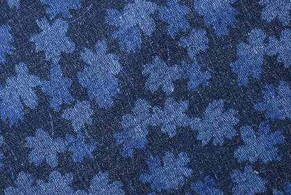 blue,  floral,  fabric,  pattern,  background,  canvas,  denim,   texture,   cloth,   weave,   closeup,   threads,   woven,   textile,   material,   clothing,   sewing,   macro,   crafts,   copy space,  monotone,  detail