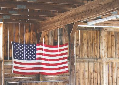 american, flag, stars and stripes, USA, United States, wood, cabin, logs