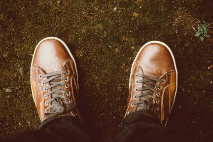 brown, leather, shoes, footwear, travel, man