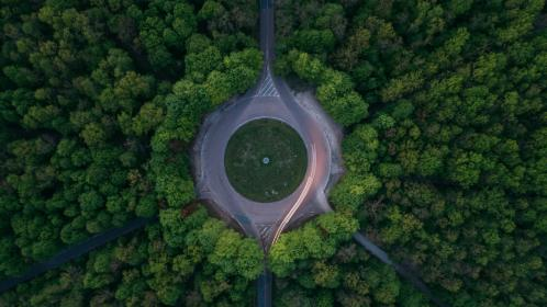 green, trees, plant, nature, forest, aerial, view, travel