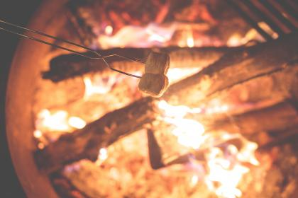 roasting, marshmallows, bonfire, fire, flames, camping, wood, logs, outdoors