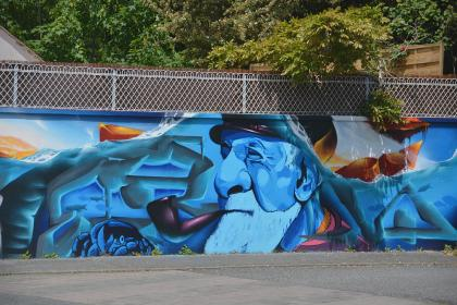 arts, paint, wall, house, fence, trees, leaves, graffiti, vandalism, wooden, steel, man, old, pipe, blue, colors, design