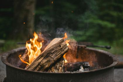 wood, fire, bonfire, campfire, fire, trees, ash, heat, firewood, smoke, steel, outdoor