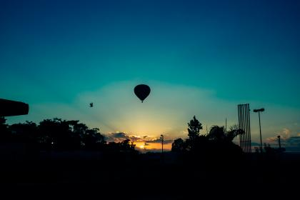 nature, landscape, parks, trees, hot, air, balloon, dusk, dawn, sunrise, sunset, sky, clouds, horizon, gradient, blue, violet, shadows, silhouette