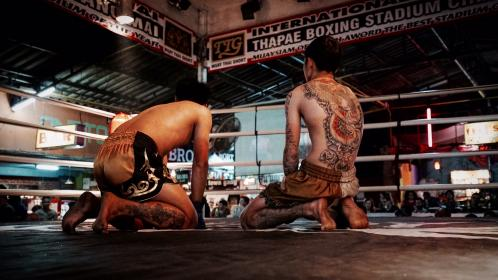 boxing, ring, men, guys, people, tattoos, sports, lights, gloves, signage, roof, shorts, back, tired