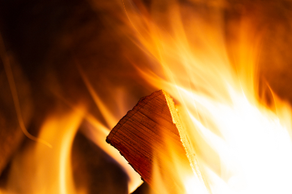 free photo of campfire    wood