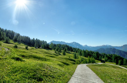 summer, sun, sky, nature, landscape, trees, path, trail, hiking, trekking, blue, mountains