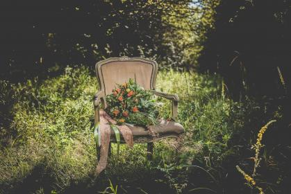 flowers, chairs, plants, nature, outdoor, green, grass, trees