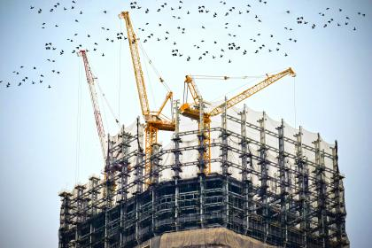 building, construction, cranes, tower, real estate, sky, birds