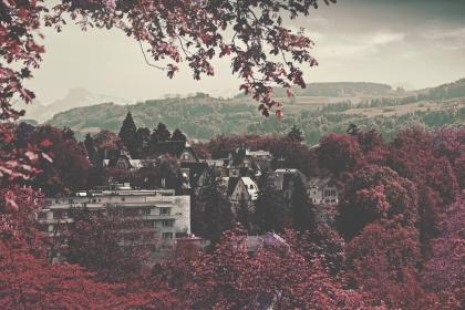 city, landscape, trees, pink, purple, violet, lush, picturesque, nature, mountains