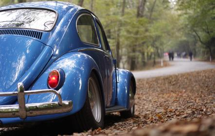car, vehicle, transportation, old, vintage, volkswaggen, travel, adventure, blue, shiny, road, woods, forest, leaves, dried