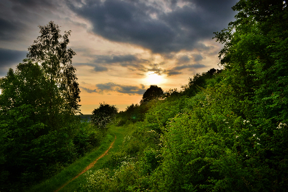 sunset,  cotswolds,  england,  path, clouds, warm, trees, green, path, country