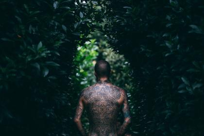 tree, green, plant, outdoor, nature, people, guy, body, tattoo