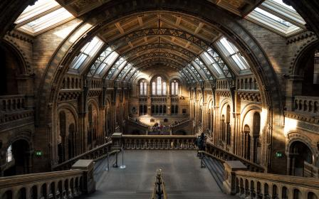 architecture, building, infrastructure, natural history museum, london, tourist spot