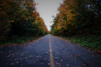 Photo of an autumn road