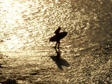 free photo of Surfer   Bali