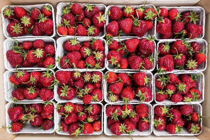 red, strawberries, fruits, food, healthy, baskets, market, fresh