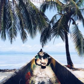 ocean, sea, vacation, wood, boat, coconut, tree, sky, beach, summer, view, adventure, travel, trip, paddle