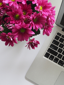mac,   pink,   flowers,   white,   table,   minimal,   apple,   keyboard,   device,   button,   computer,   laptop,   macbook,   technology