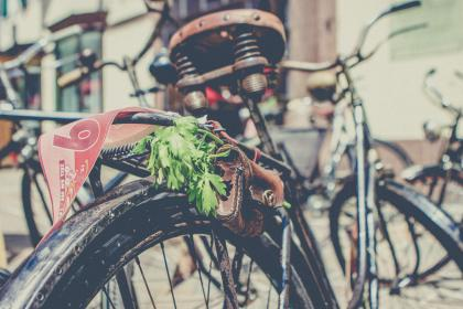 bicycle, tire, old, rusty, green, leaves, leather, wallet, pocket
