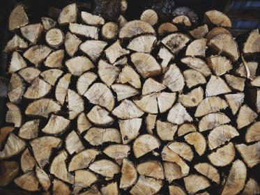 wood, brown, cuts, collection, trees, trunk