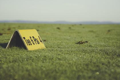 green, grass, ground, nature, outdoor, blur, golf, field