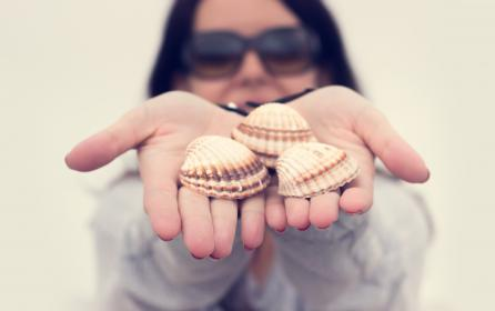 hand, palm, shell, seafood, blur, people, woman