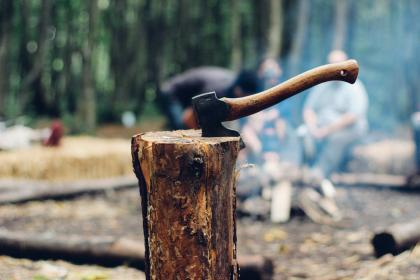 axe, wood, logs, lumber, camping, outdoors, nature
