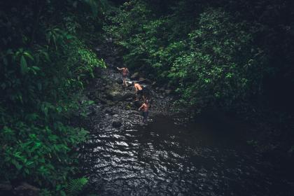 river, water, rocks, green, trees, plant, forest, people, outdoor, adventure, travel, men, guys