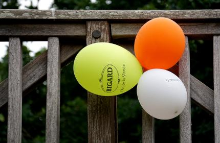wood, wooden, fence, gate, colorful, balloons, party, outside