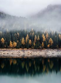 trees, plants, nature, forests, lake, water, reflection, autumn, fall, foggy, mountain, landscape