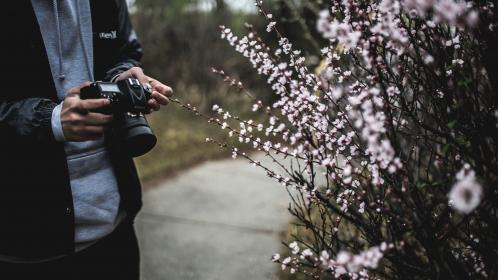 people, man, guy, camera, nikon, photography, photographer, video, record, photo, lens, road, plants, flower, blooms, tree, grass, hands