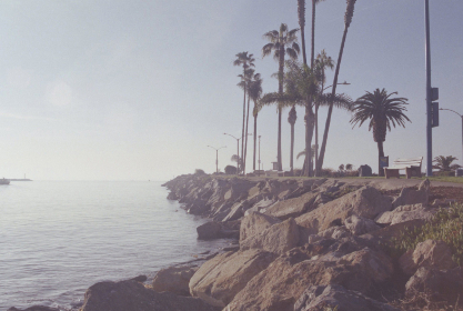 coast,  sunrise,  bay,  ocean,  palm,  trees,  shore,  rocky,  sea,  water,  landscape,  bench,  scenic,  view, vintage