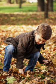 autumn,   outdoors,   games,   nature,   little,   fall,   kid,   happy,   childhood,   season,   leaf,   small,   young,   boy,   picking,   park,   collecting,   fashion,   junior,   style,   child,   clothes, toddler, child, playing, brown, leaves, people, son