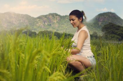 rice, field, green, nature, plant, crops, agriculture, trees, mountain, people, woman, girl, alone