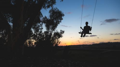 swing, silhouette, shadow, people, sunset, dusk, trees, nature, outdoors, fun
