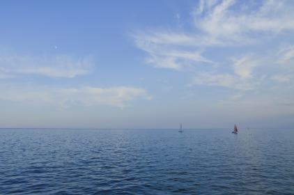 sailboats, ocean, sea, water, horizon, blue, sky, nature