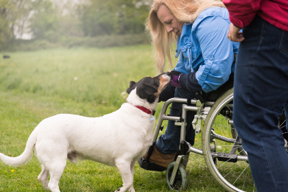 woman, dog, pet, friend, outdoors, grass, female, person, jacket, pal, buddy, wheelchair