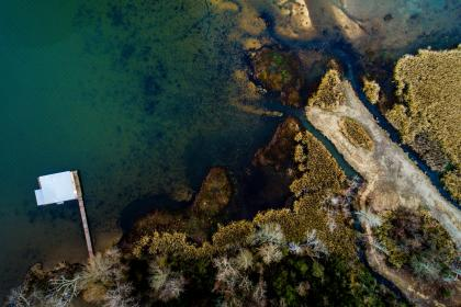 sea, water, lake, aerial, view, nature, trees, plant