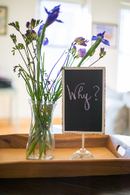 words,  sign,  text,  signage,  flowers,  vase,  why,  reason,  business,  concept,  curiosity,  question,  interior,  handwriting