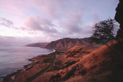sea, ocean, water, wave, nature, sand, coast, shore, beach, highland, road, grass, landscape, view, mountain, tree, clouds, sky