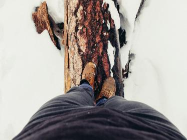 snow, winter, cold, footwear, shoes, tree, wood, adventure, outdoor