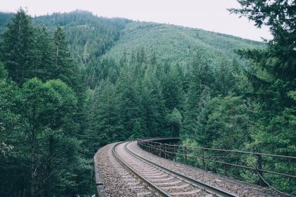 railroad, railway, train tracks, transportation, trees, leaves, branches, mountains, hills, nature